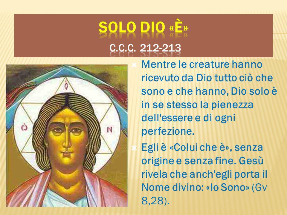 Solo Dio «è» c.c.c. 212-213