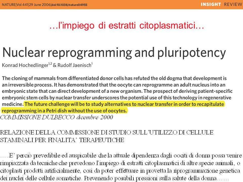 …l'impiego di estratti citoplasmatici…