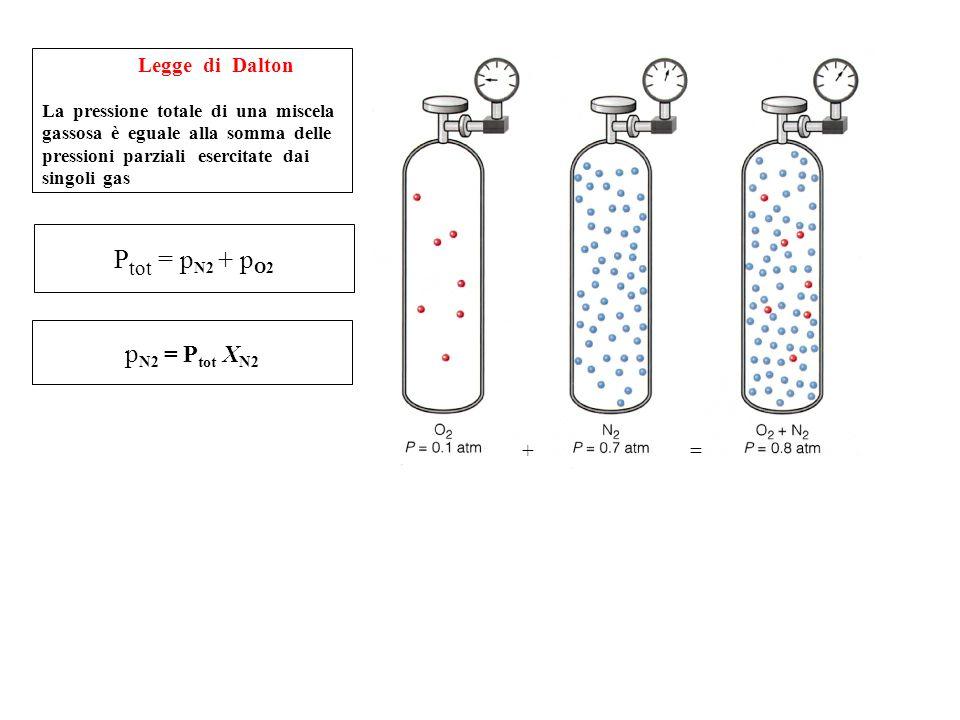 Ptot = pN2 + pO2 pN2 = Ptot XN2 Legge di Dalton + =