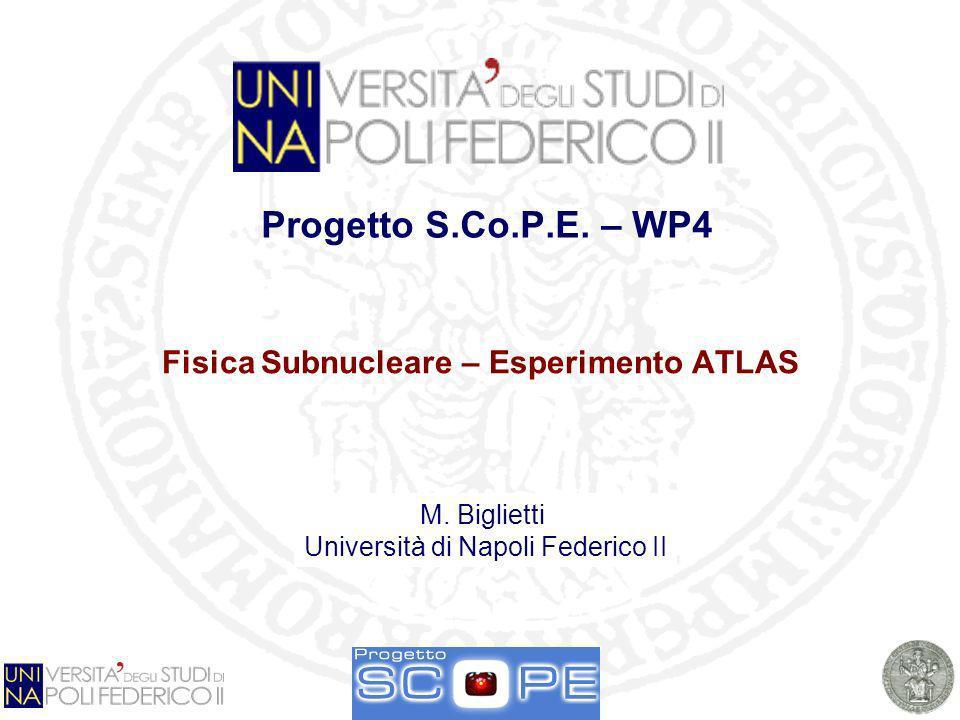 Fisica Subnucleare – Esperimento ATLAS