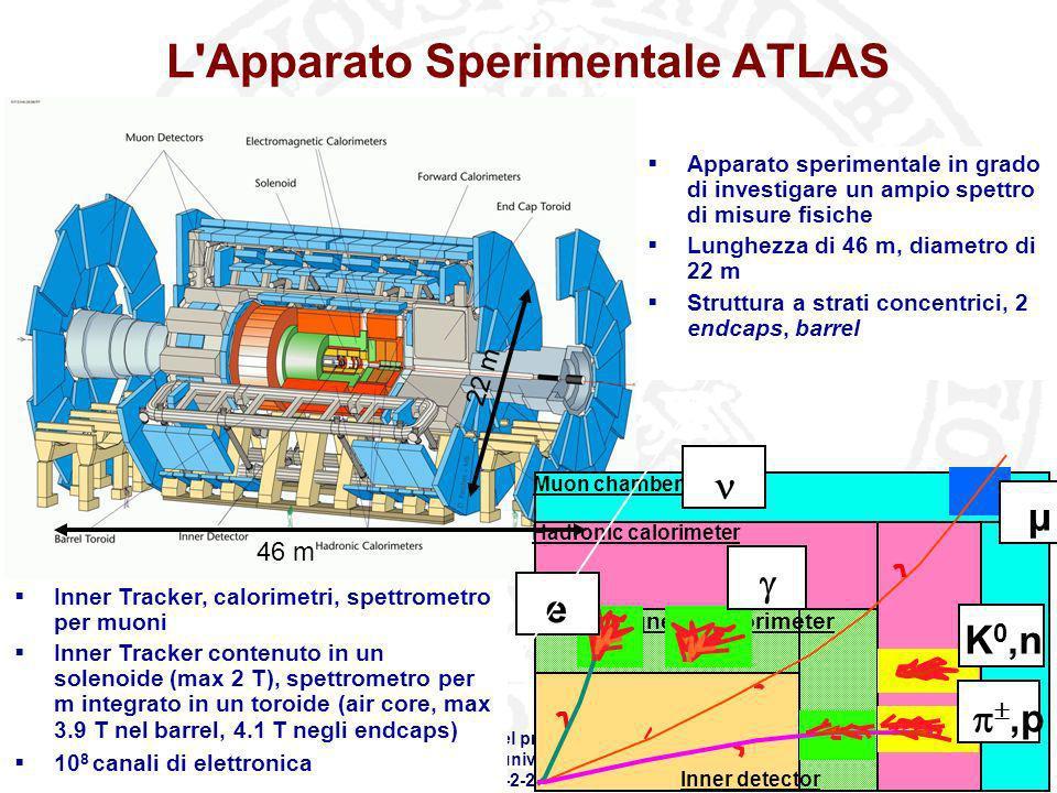 L Apparato Sperimentale ATLAS