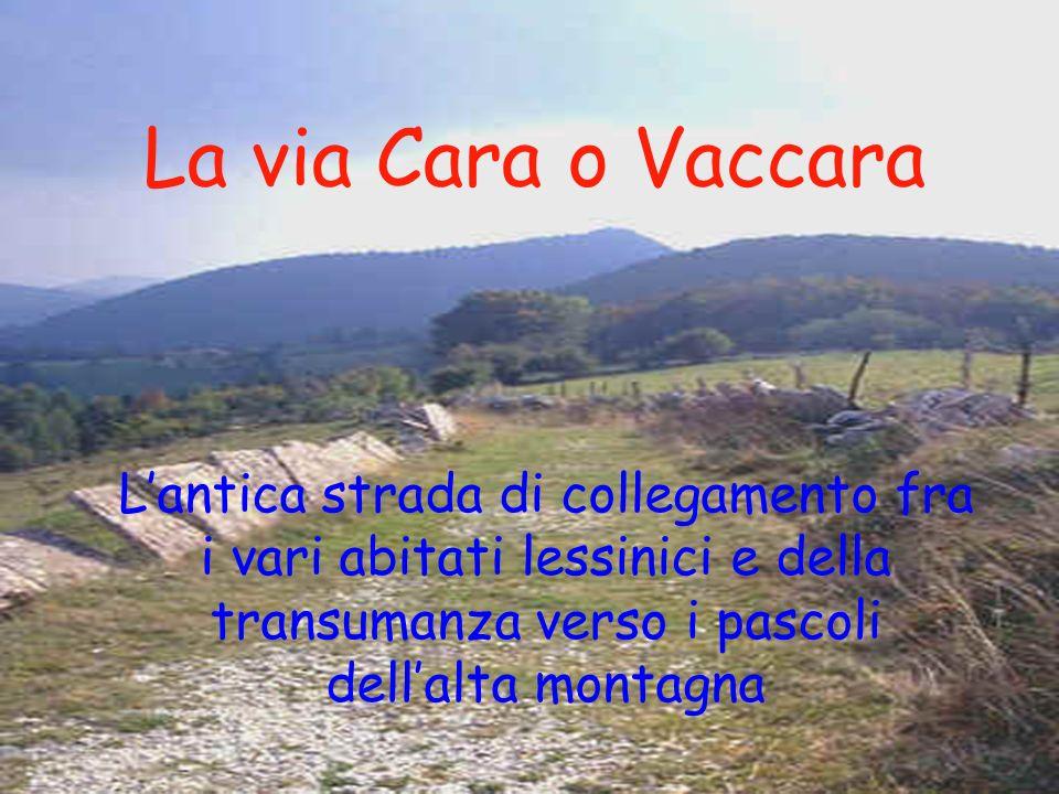 La via Cara o Vaccara L'antica strada di collegamento fra i vari abitati lessinici e della transumanza verso i pascoli dell'alta montagna.
