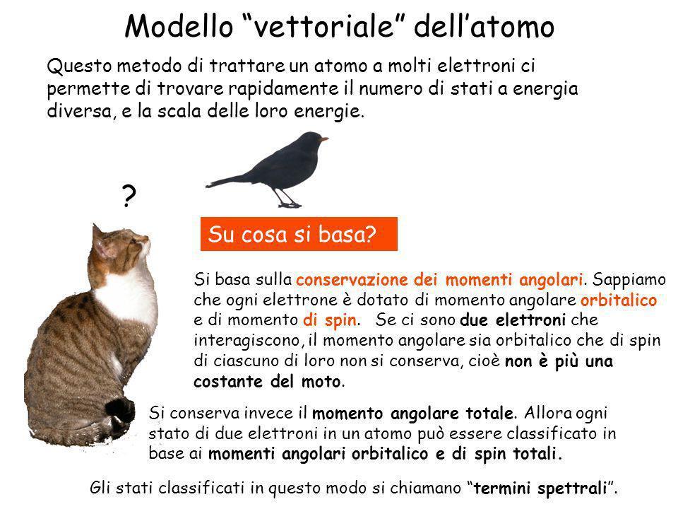 Modello vettoriale dell'atomo