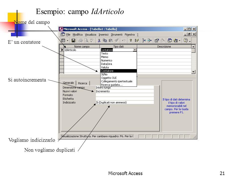 Esempio: campo IdArticolo