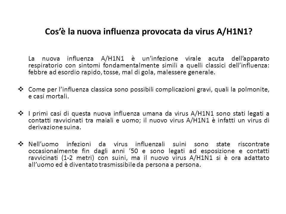 Cos'è la nuova influenza provocata da virus A/H1N1