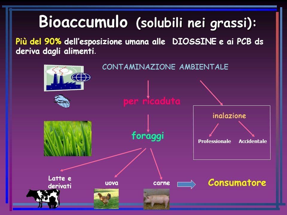 Bioaccumulo (solubili nei grassi):