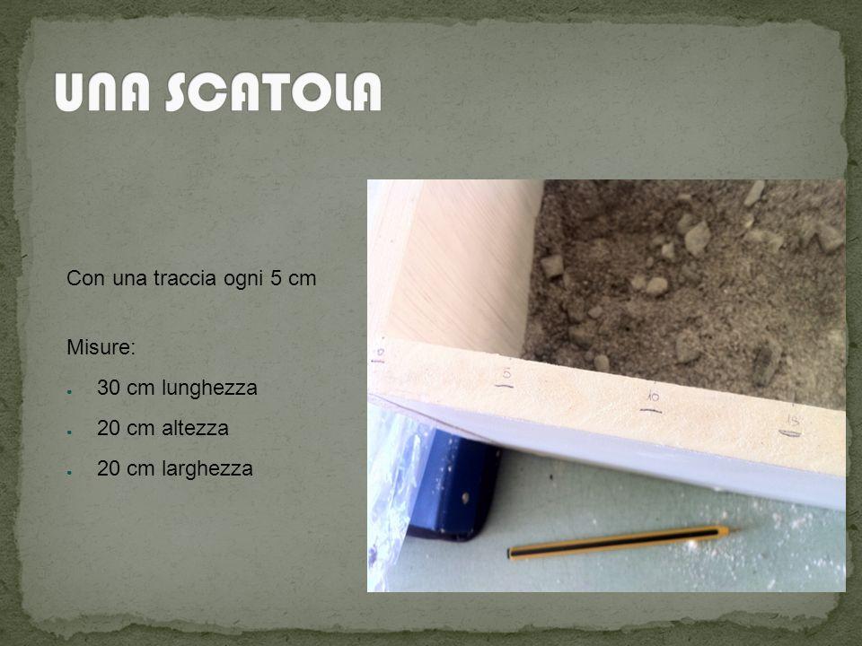 UNA SCATOLA Con una traccia ogni 5 cm Misure: 30 cm lunghezza