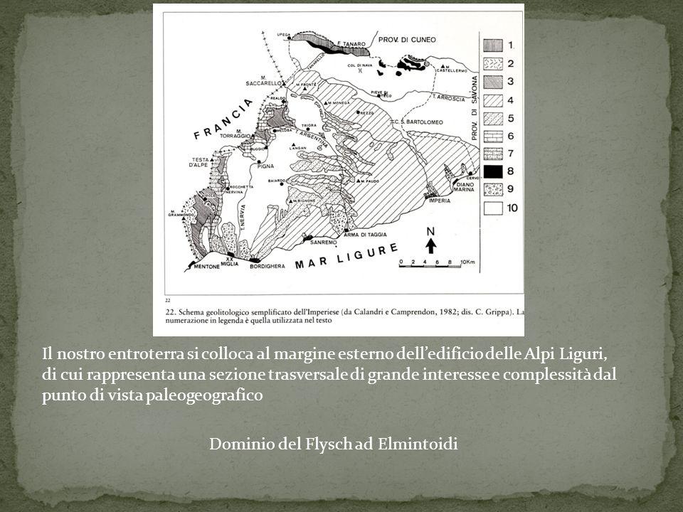 Dominio del Flysch ad Elmintoidi