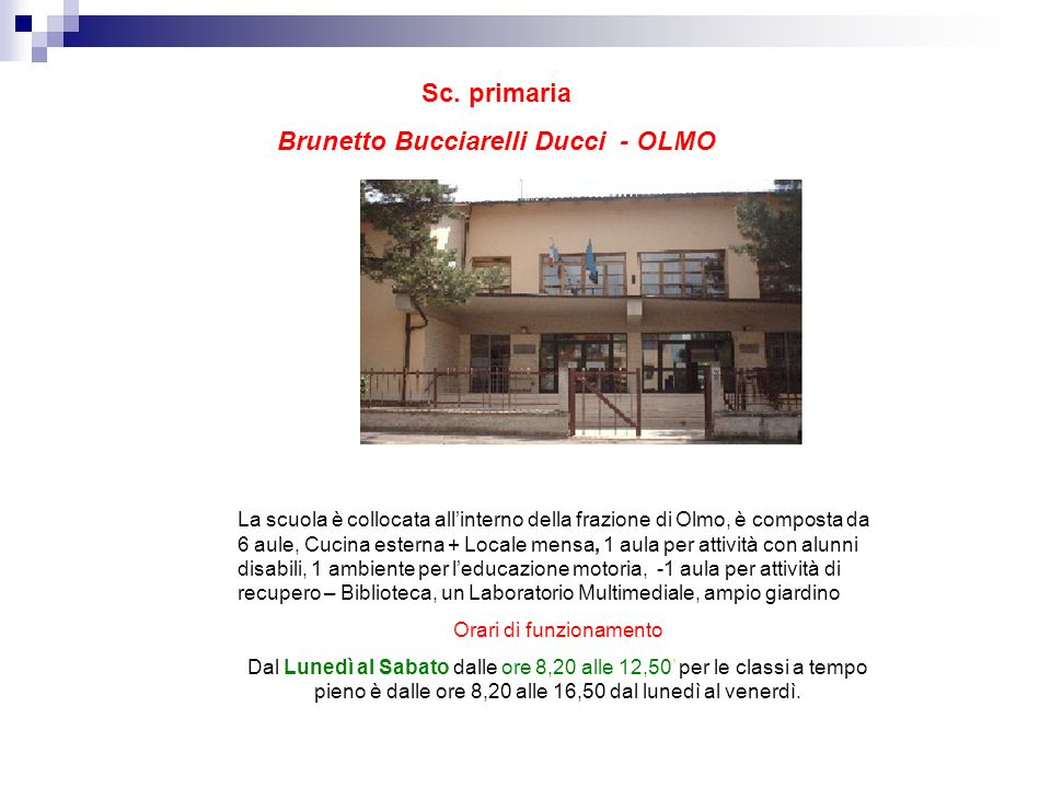 Brunetto Bucciarelli Ducci - OLMO