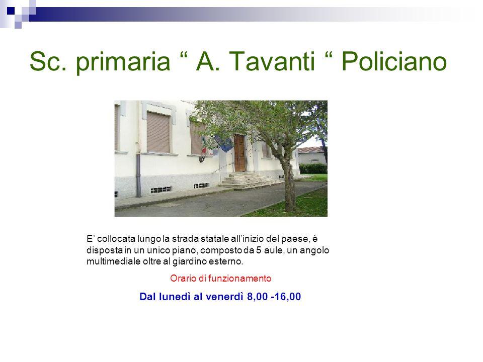 Sc. primaria A. Tavanti Policiano