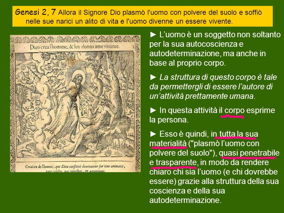 Genesi 2, 7 Allora il Signore Dio plasmò l uomo con polvere del suolo e soffiò nelle sue narici un alito di vita e l uomo divenne un essere vivente.