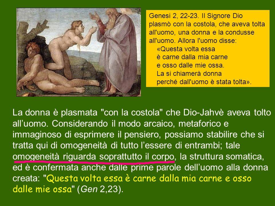Genesi 2, 22-23. Il Signore Dio plasmò con la costola, che aveva tolta all uomo, una donna e la condusse all uomo. Allora l uomo disse: