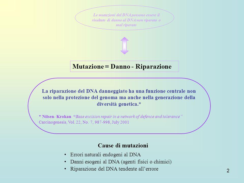 Mutazione = Danno - Riparazione