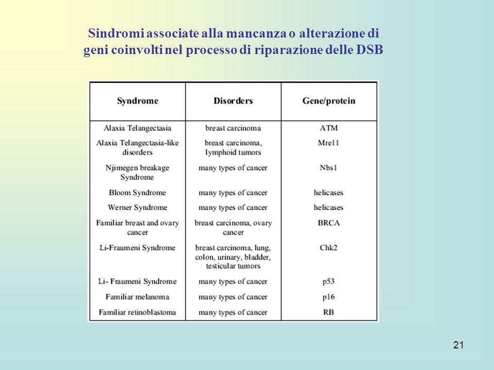 Sindromi associate alla mancanza o alterazione di geni coinvolti nel processo di riparazione delle DSB