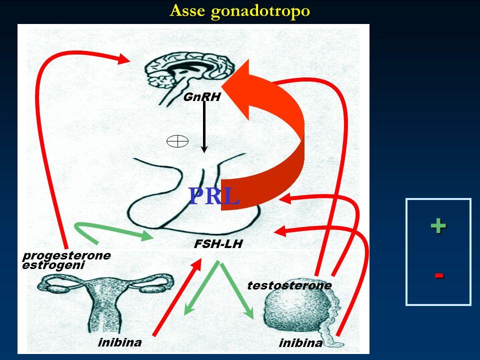 + - PRL Asse gonadotropo GnRH FSH-LH progesterone estrogeni