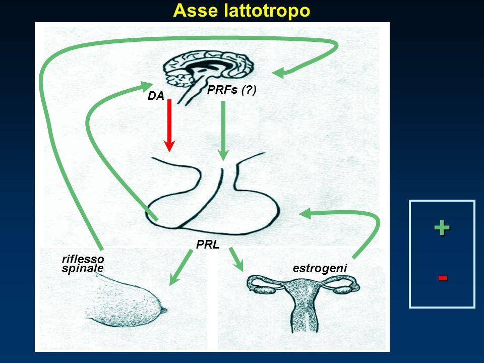 Asse lattotropo riflesso estrogeni PRFs ( ) PRL DA spinale + -