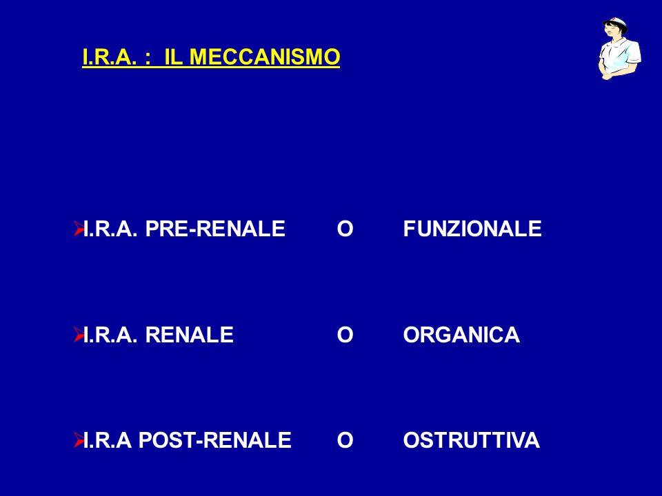 I.R.A. : IL MECCANISMO I.R.A. PRE-RENALE O FUNZIONALE.
