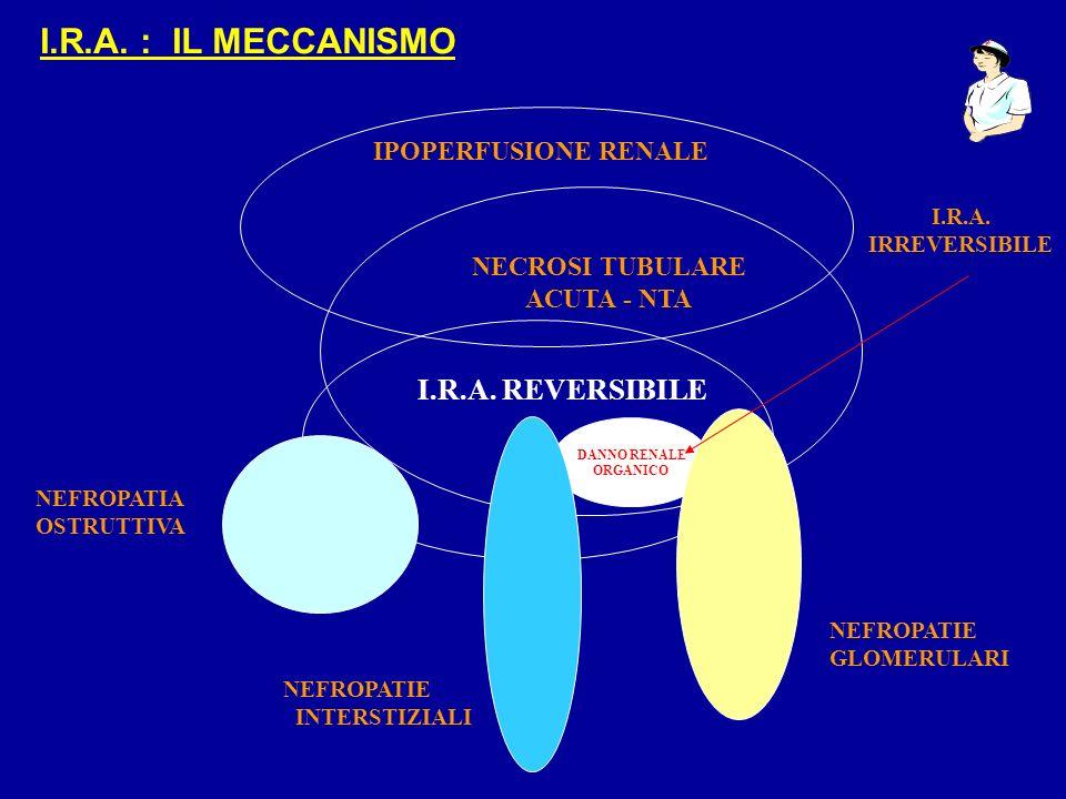 I.R.A. : IL MECCANISMO I.R.A. REVERSIBILE IPOPERFUSIONE RENALE