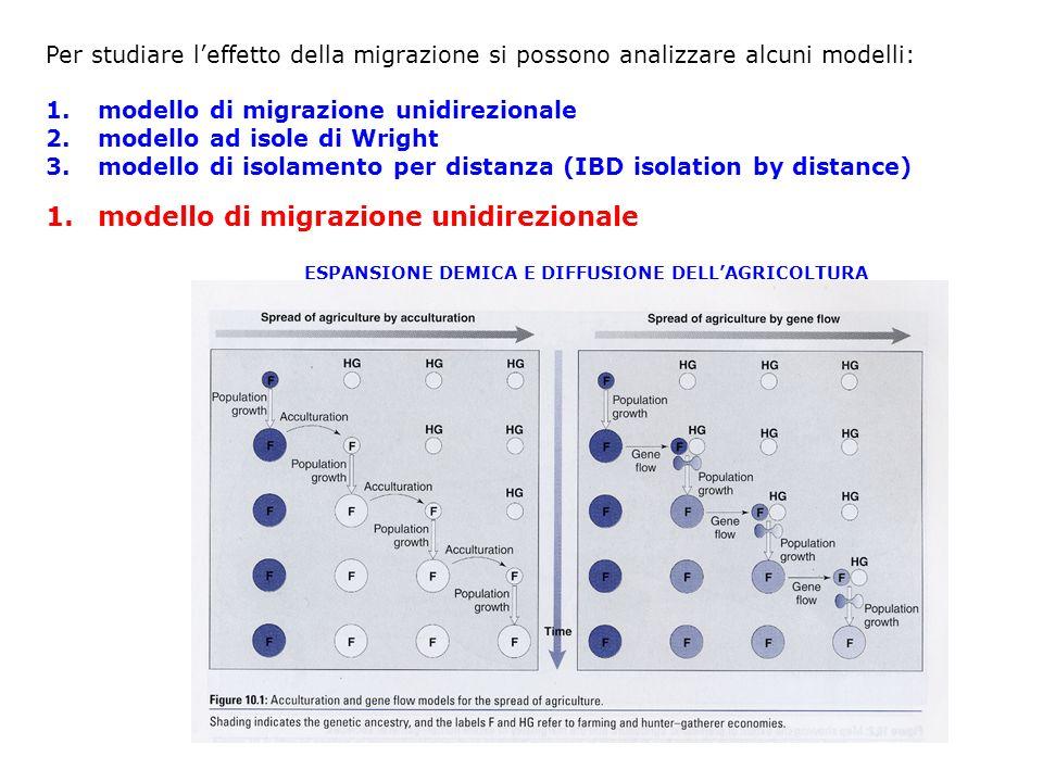 modello di migrazione unidirezionale
