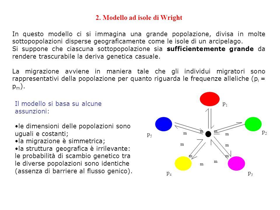 2. Modello ad isole di Wright