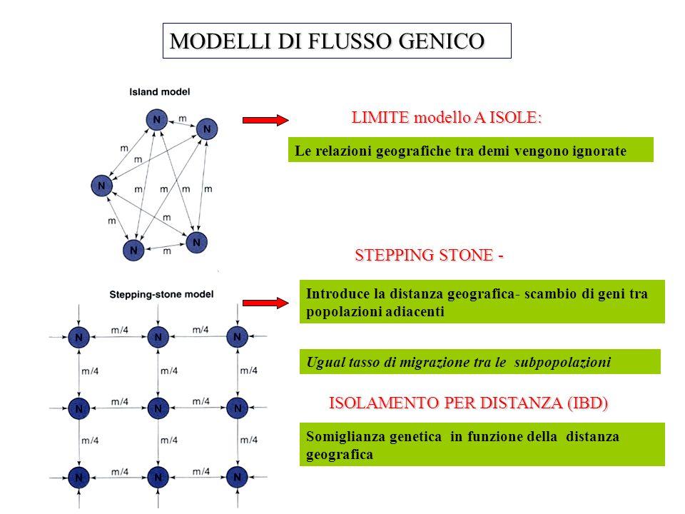 MODELLI DI FLUSSO GENICO