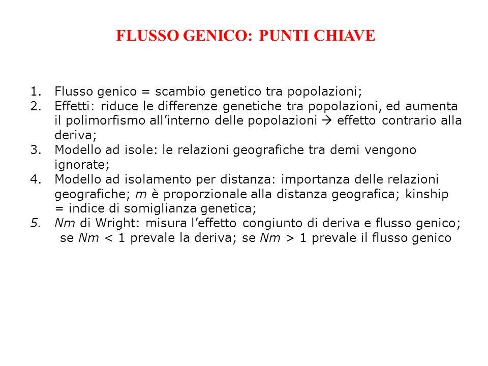 FLUSSO GENICO: PUNTI CHIAVE