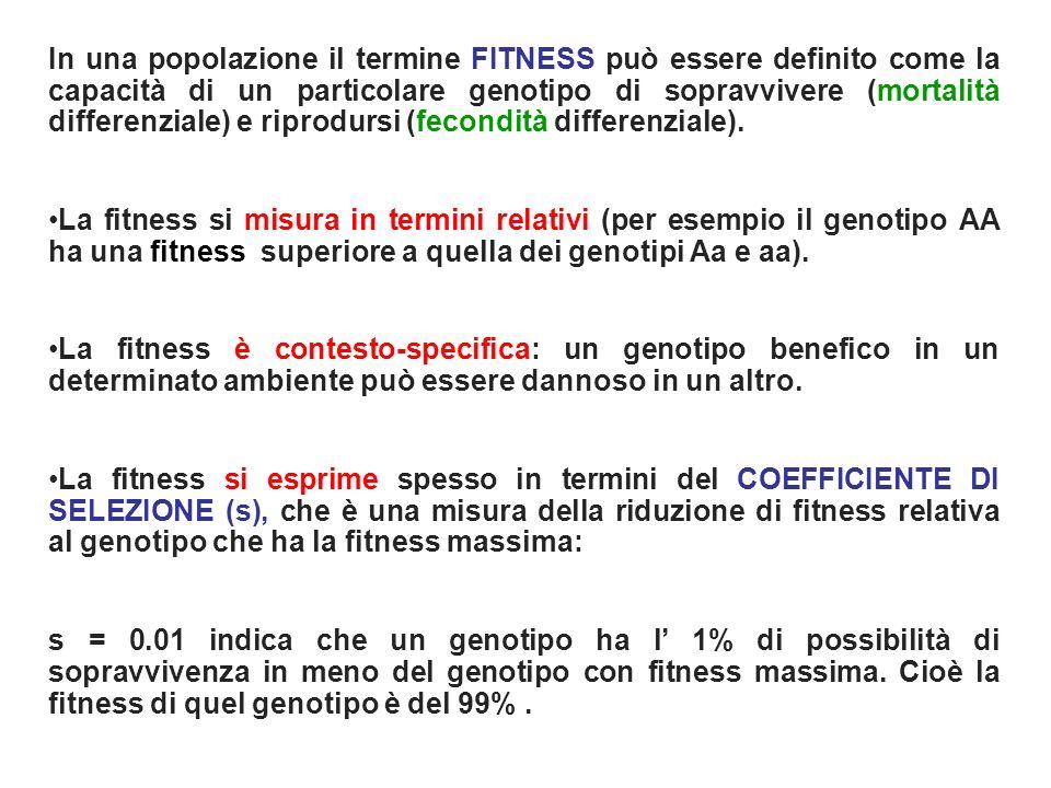 In una popolazione il termine FITNESS può essere definito come la capacità di un particolare genotipo di sopravvivere (mortalità differenziale) e riprodursi (fecondità differenziale).
