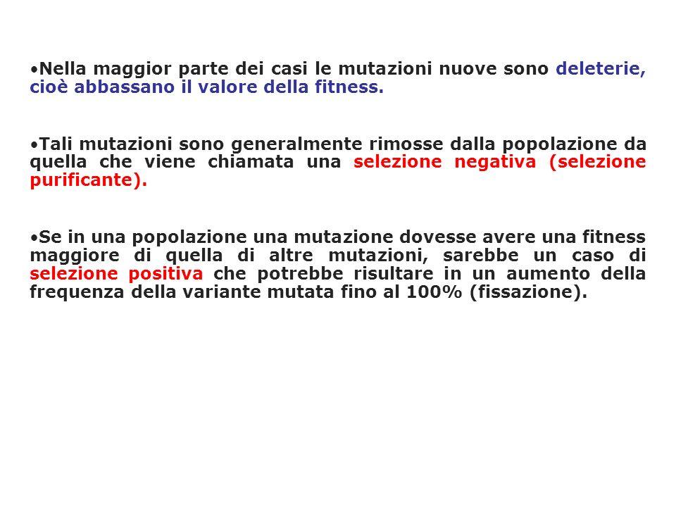 Nella maggior parte dei casi le mutazioni nuove sono deleterie, cioè abbassano il valore della fitness.