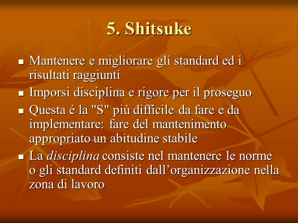 5. Shitsuke Mantenere e migliorare gli standard ed i risultati raggiunti. Imporsi disciplina e rigore per il proseguo.
