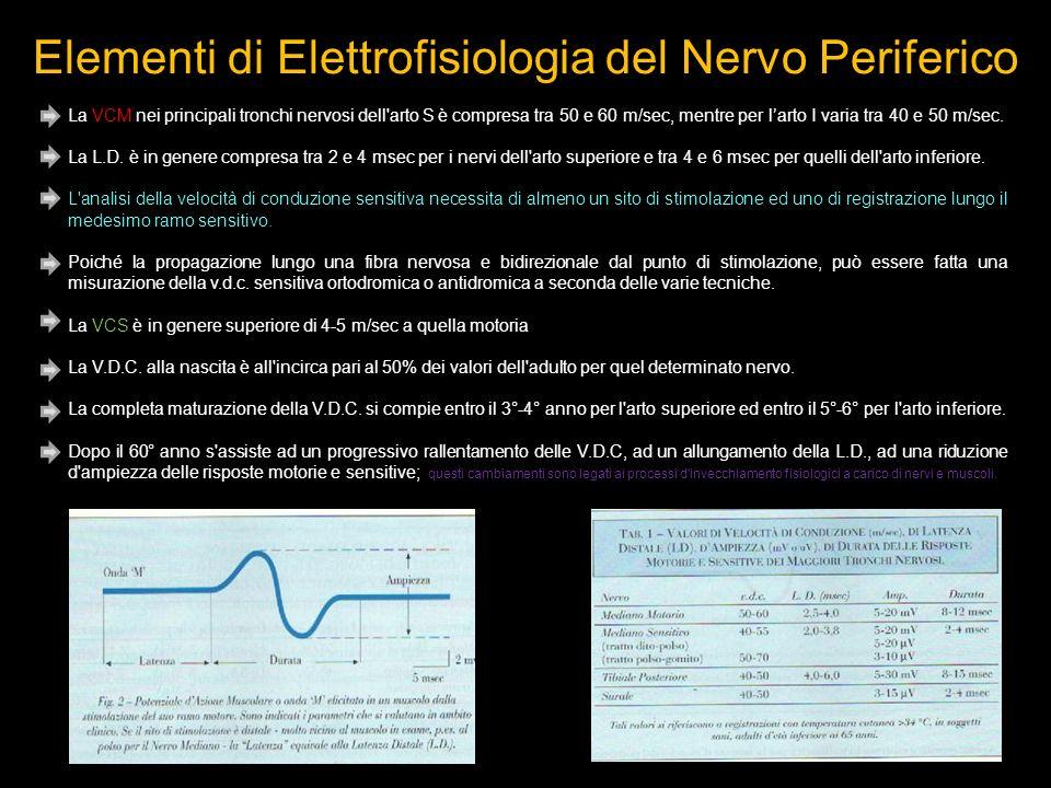 Elementi di Elettrofisiologia del Nervo Periferico