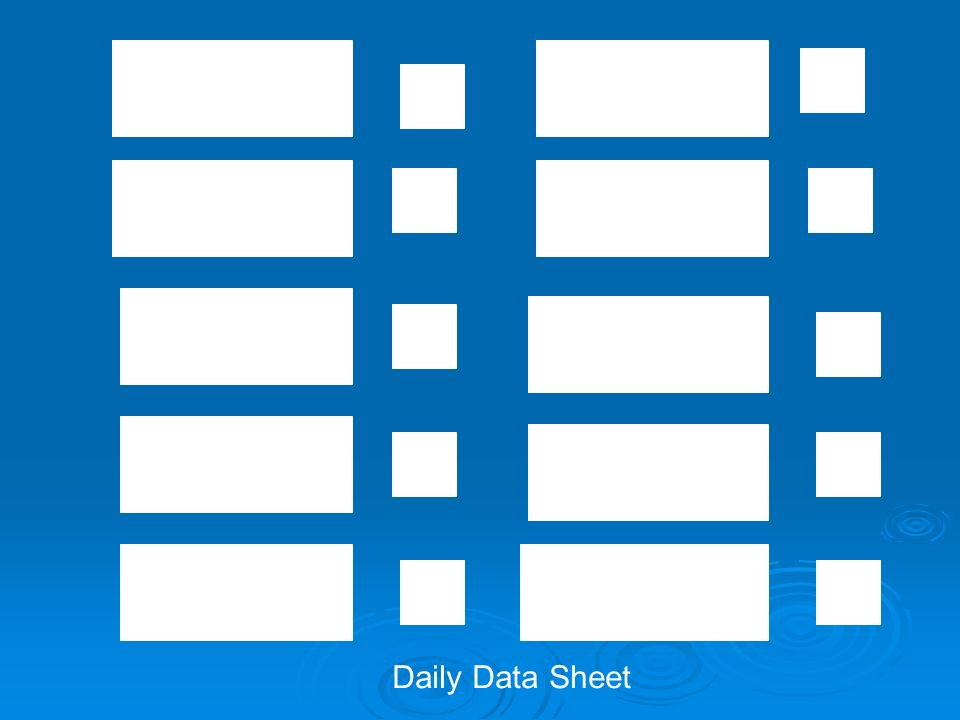 Daily Data Sheet