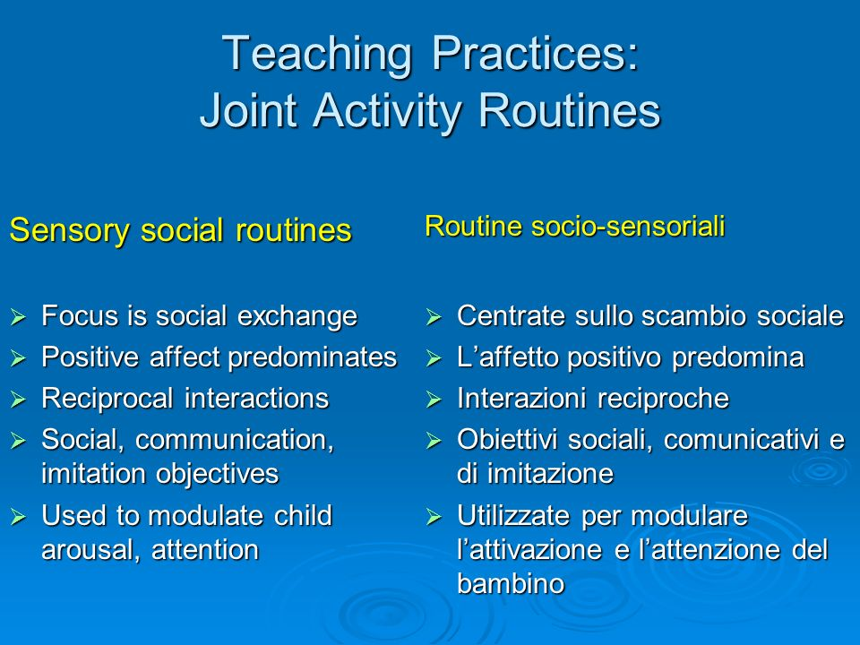 Teaching Practices: Joint Activity Routines
