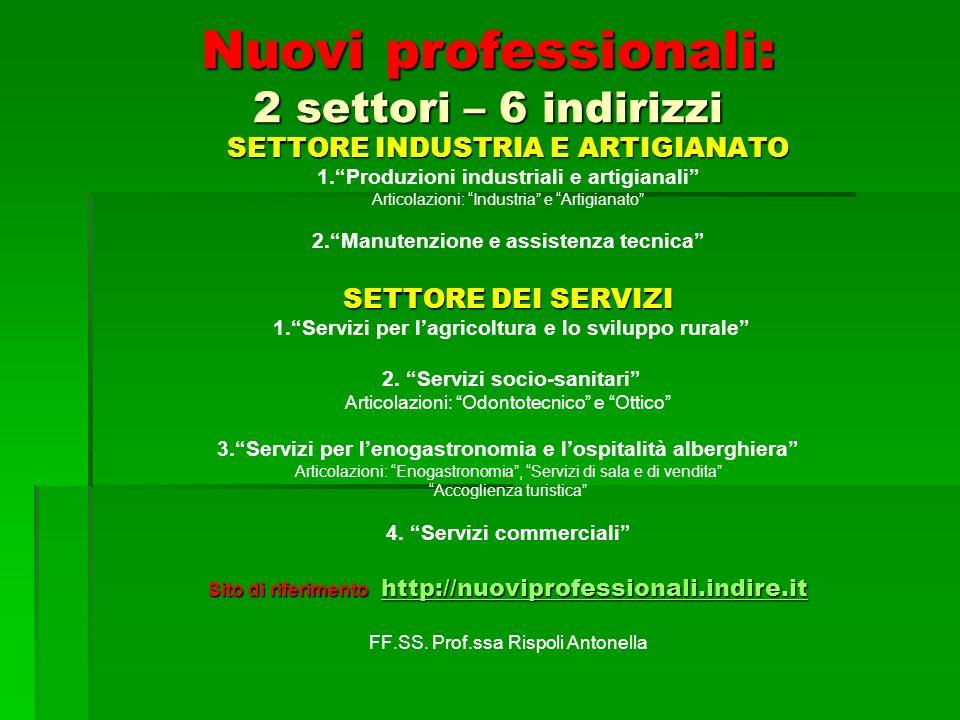 Nuovi professionali: 2 settori – 6 indirizzi