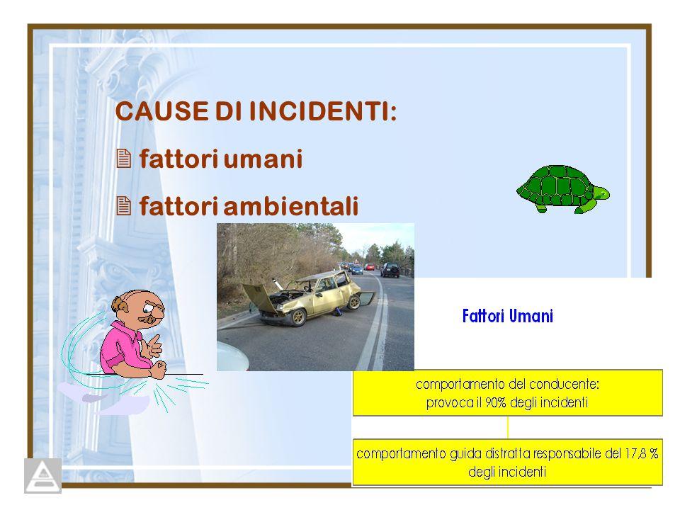 CAUSE DI INCIDENTI:  fattori umani  fattori ambientali
