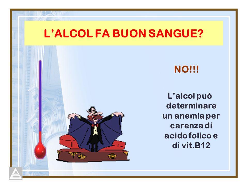 L'ALCOL FA BUON SANGUE NO!!!