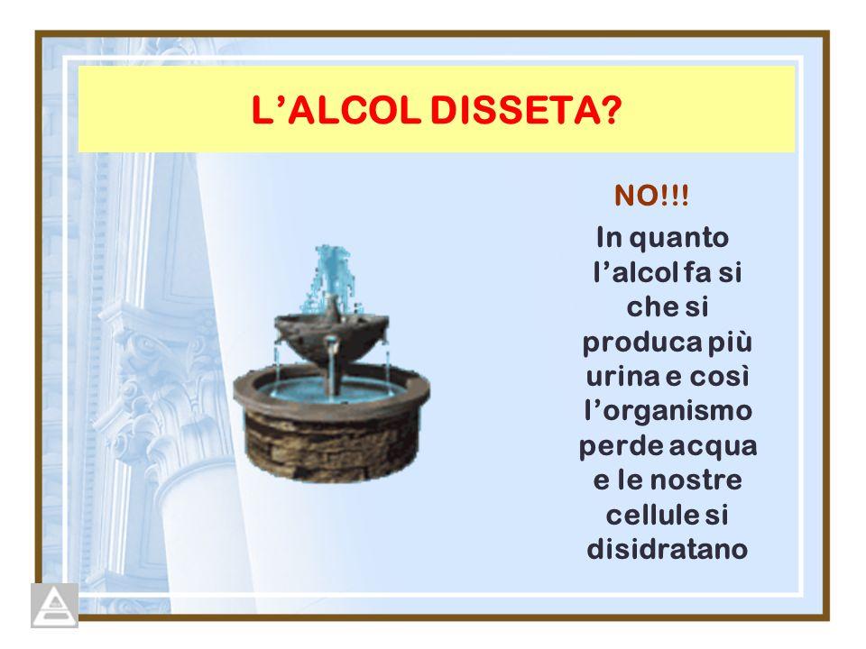 L'ALCOL DISSETA. NO!!.