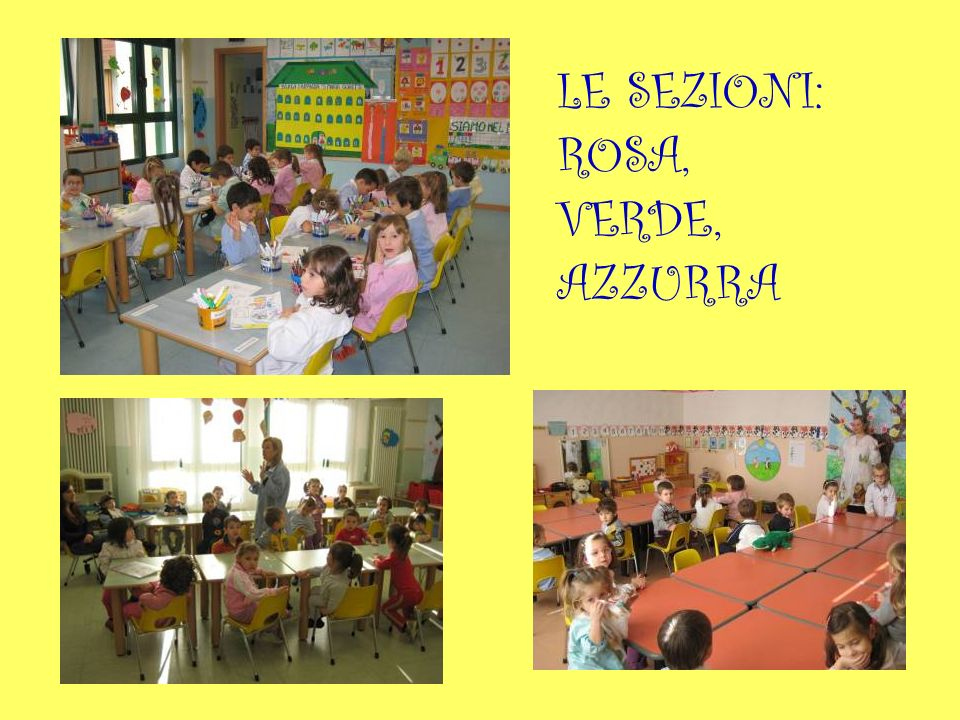 LE SEZIONI: ROSA, VERDE, AZZURRA