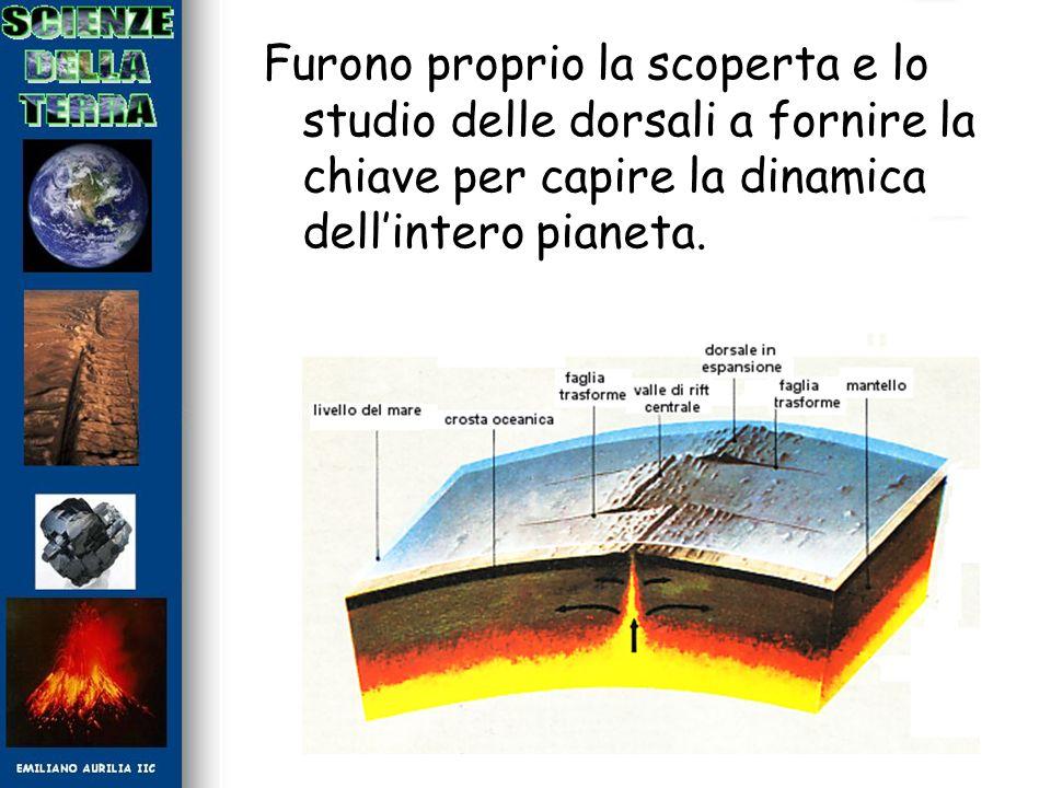 Furono proprio la scoperta e lo studio delle dorsali a fornire la chiave per capire la dinamica dell'intero pianeta.