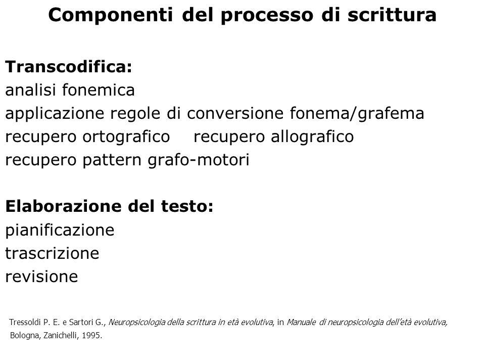 Componenti del processo di scrittura