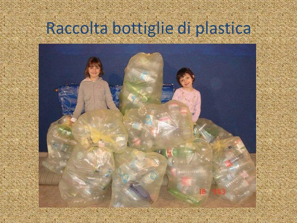 Raccolta bottiglie di plastica
