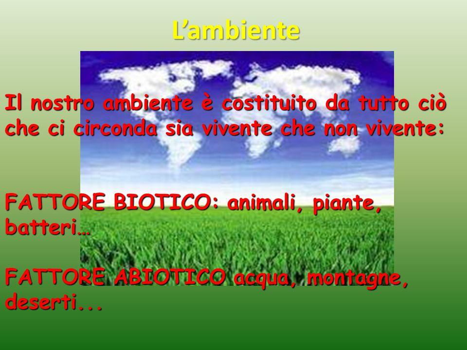 L'ambiente Il nostro ambiente è costituito da tutto ciò che ci circonda sia vivente che non vivente: