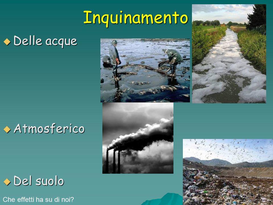 Inquinamento Delle acque Atmosferico Del suolo