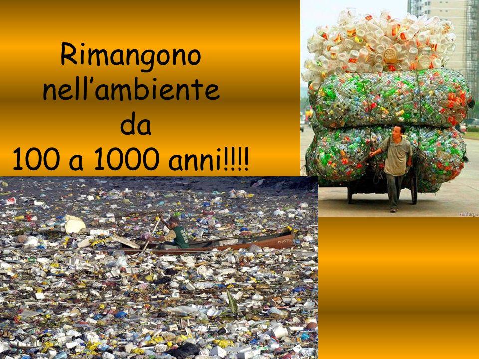 Rimangono nell'ambiente da 100 a 1000 anni!!!!