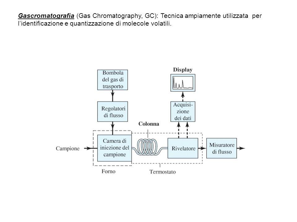 Gascromatografia (Gas Chromatography, GC): Tecnica ampiamente utilizzata per l'identificazione e quantizzazione di molecole volatili.