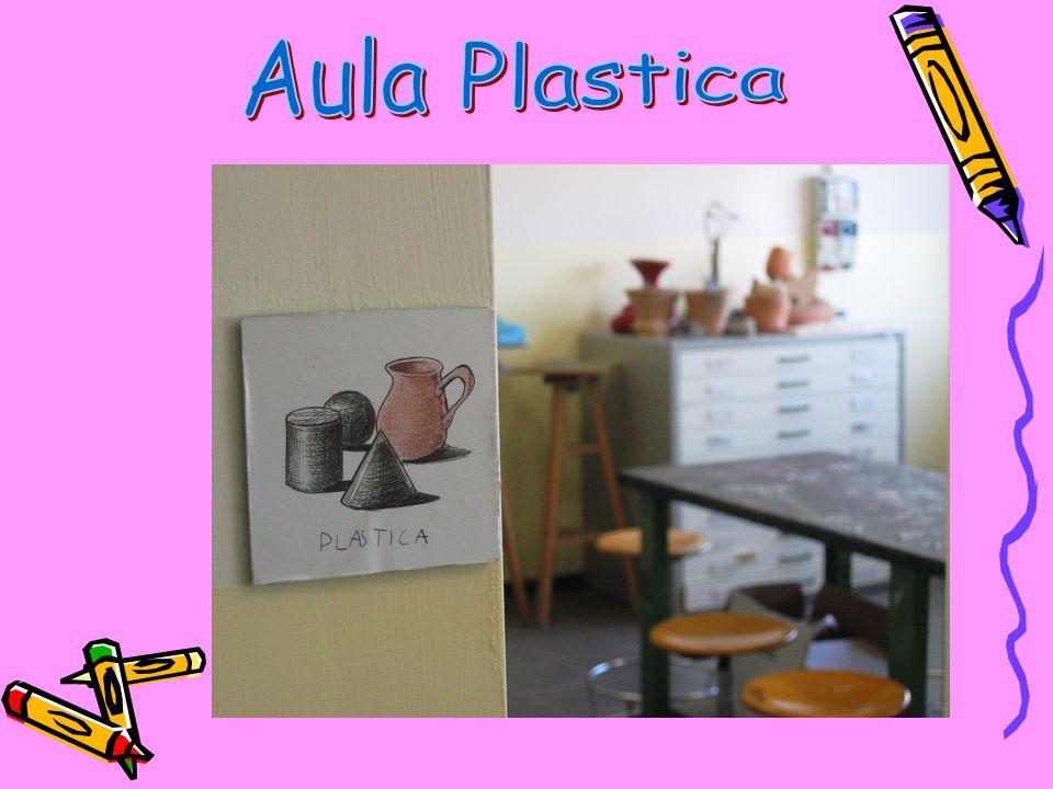 Aula Plastica