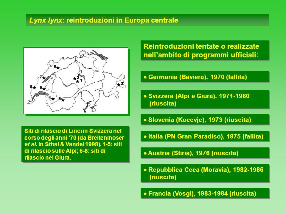 Lynx lynx: reintroduzioni in Europa centrale