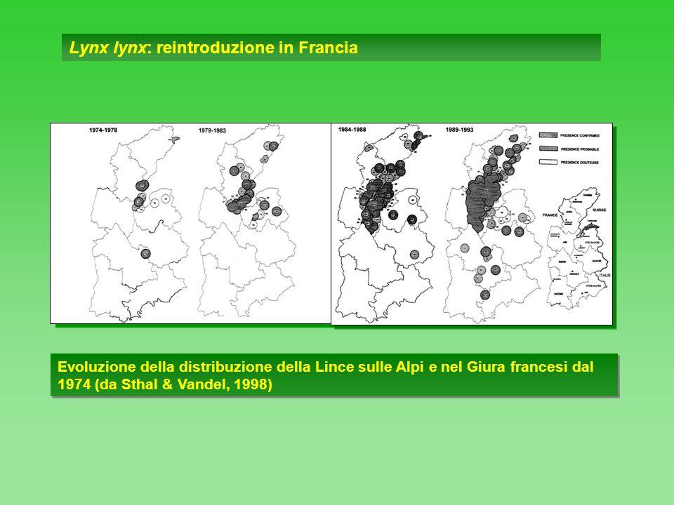 Lynx lynx: reintroduzione in Francia