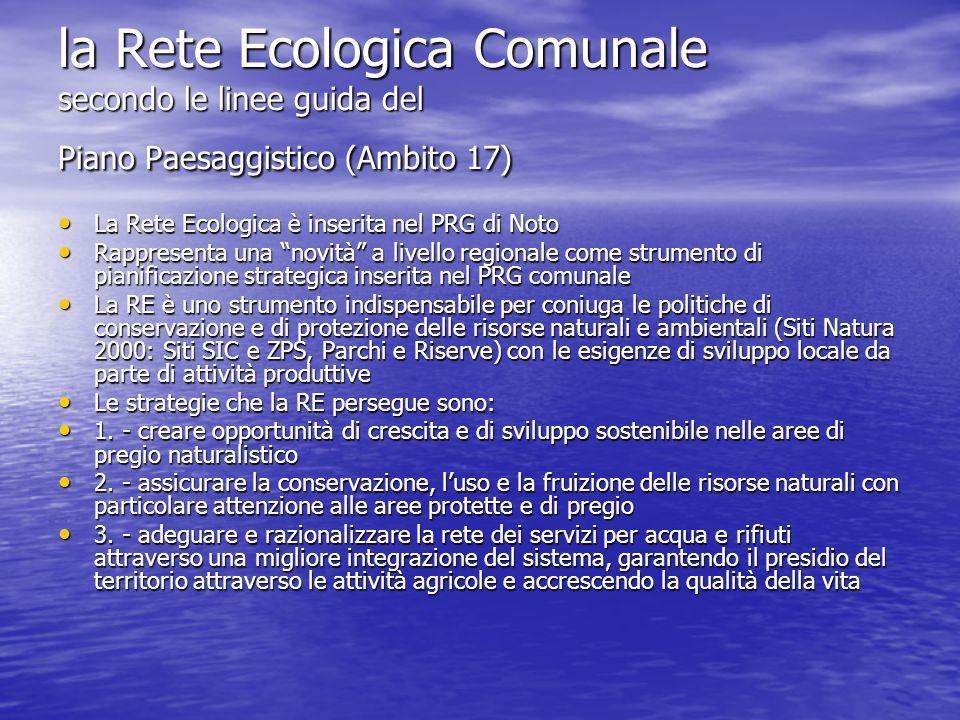 la Rete Ecologica Comunale secondo le linee guida del Piano Paesaggistico (Ambito 17)