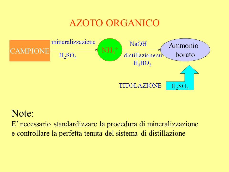 AZOTO ORGANICO Note: Ammonio NH4+ CAMPIONE borato