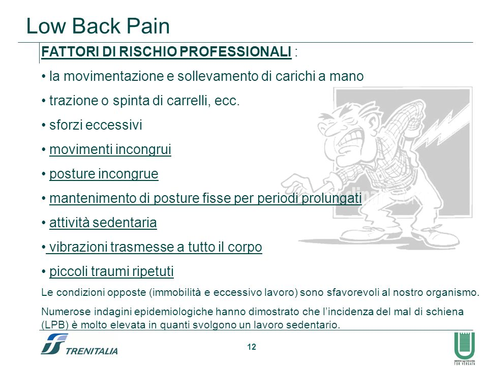 Low Back Pain FATTORI DI RISCHIO PROFESSIONALI :